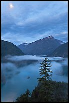 Diablo Lake, fog, and moon, dawn, North Cascades National Park Service Complex.  ( color)
