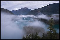 Low fog rolling over Diablo Lake, dawn, North Cascades National Park Service Complex.  ( color)