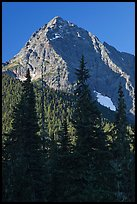 Greybeard Peak rising above forest, North Cascades National Park.  ( color)