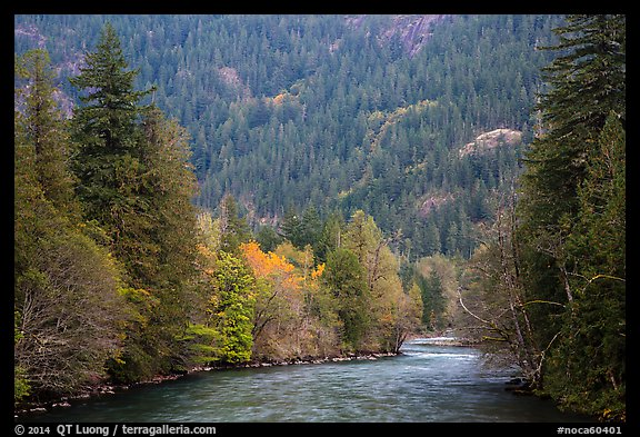 Skagit River in autumn, North Cascades National Park Service Complex.  (color)