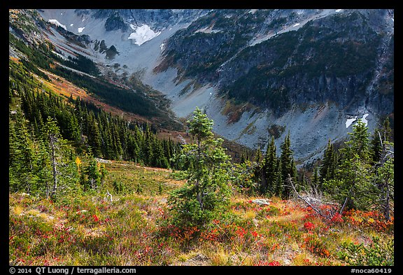 Fisher Creek Basin valley, North Cascades National Park.  (color)
