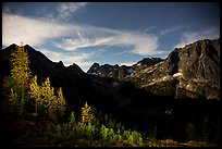 Larch trees and Fisher Creek cirque at night, North Cascades National Park. Washington, USA.