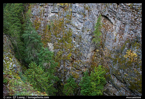 Sheer Skagit Gneiss walls of Agnes Gorge, Glacier Peak Wilderness.  (color)