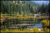 Coon Lake reflections, Stehekin, North Cascades National Park Service Complex.  ( color)