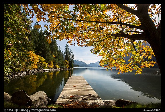 Deck framed by tree in autumn foliage, Lake Chelan, Stehekin, North Cascades National Park Service Complex. Washington, USA.