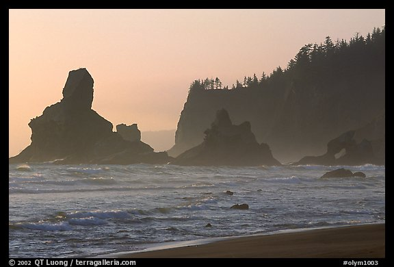Sea stacks and arch on Shi-Shi Beach. Olympic National Park (color)