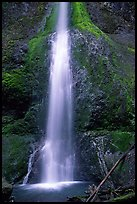 Marymere falls, spring. Olympic National Park, Washington, USA. (color)