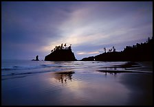Seastacks reflected at sunset on wet sand, Second Beach. Olympic National Park, Washington, USA.