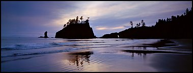 Second Beach with wet sand reflections. Olympic National Park (Panoramic color)