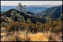 Summer grasses and rolling hills. Pinnacles National Park ( color)