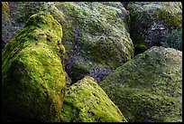 Moss-covered boulders, Bear Gulch. Pinnacles National Park ( color)