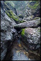 Chalone Creek flowing amongst boulders. Pinnacles National Park ( color)