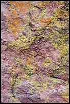 Colorful lichen and rock. Pinnacles National Park, California, USA. (color)