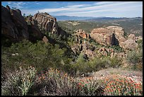 West side rock formations and spring wildflowers. Pinnacles National Park ( color)