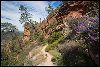 Juniper Canyon trail in spring. Pinnacles National Park ( color)