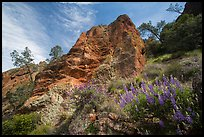 Lupine and rock towers in Juniper Canyon. Pinnacles National Park ( color)