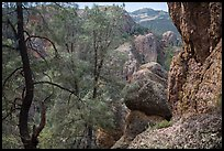 Andesite rock formations. Pinnacles National Park ( color)