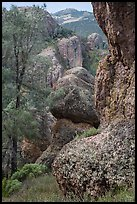 Andesite outcrops. Pinnacles National Park ( color)
