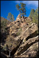 Looking up rock gully. Pinnacles National Park ( color)