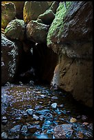 Stream and boulders, Bear Gulch Lower Cave. Pinnacles National Park ( color)