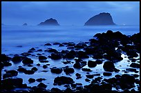 Rocks and sea stacks, blue hour, False Klamath Cove. Redwood National Park ( color)