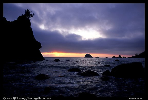Seastacks and clouds, Hidden Beach, sunset. Redwood National Park (color)