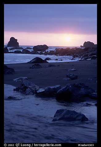 Stream on beach at sunset, False Klamath cove. Redwood National Park, California, USA.
