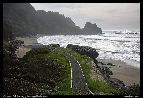 Trail and Enderts Beach. Redwood National Park (color)