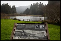 Pond and interpretive sign. Redwood National Park ( color)