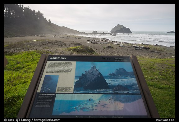 False Klamath Cover, Seastacks interpretive sign. Redwood National Park (color)