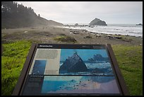 False Klamath Cover, Seastacks interpretive sign. Redwood National Park ( color)