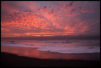 Brilliant clouds at sunset, Gold Bluffs Beach, Prairie Creek Redwoods State Park. Redwood National Park ( color)