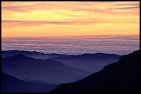 Receding lines of  foothills and sea of clouds at sunset. Sequoia National Park ( color)