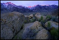 Volcanic boulders in Alabama hills and Sierras, sunrise. Sequoia National Park ( color)