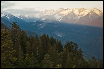 Kaweah Range section of the Sierra Nevada Mountains at sunset. Sequoia National Park ( color)