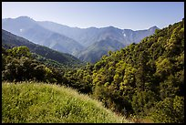 Hills and mountains in spring near Amphitheater Point. Sequoia National Park ( color)