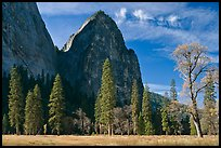 El Capitan Meadow and Cathedral Rocks in autumn. Yosemite National Park, California, USA.