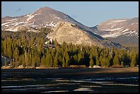 Lambert Dome and mountain, spring, Tuolumne Meadows. Yosemite National Park ( color)