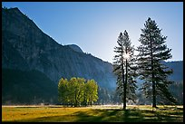 Sun and Ahwanhee Meadows in spring. Yosemite National Park, California, USA.