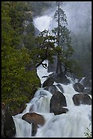 Cascade Creek spring run-off. Yosemite National Park ( color)
