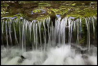 Cascading water, Fern Spring. Yosemite National Park ( color)