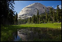 Half-Dome from Hidden Lake. Yosemite National Park ( color)