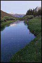 Tuolumne River in Lyell Canyon, dusk. Yosemite National Park ( color)