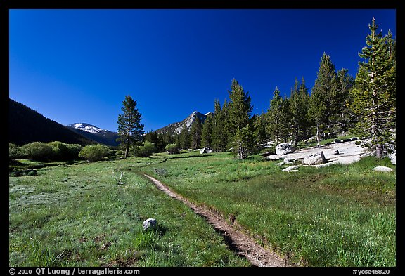 Pacific Crest Trail, Lyell Canyon. Yosemite National Park (color)