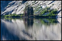 Trees and granite slabs reflected, Merced Lake. Yosemite National Park ( color)