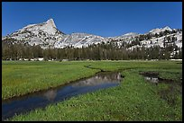 Meadow, stream, Cathedral range. Yosemite National Park ( color)