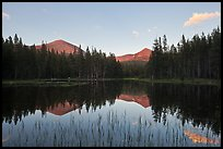 Mt Dana and Mt Gibbs reflected in tarn at sunset. Yosemite National Park ( color)