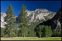 Ahwanhee Meadow, summer. Yosemite National Park, California, USA.