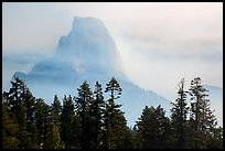 Half-Dome, clearing fog. Yosemite National Park ( color)