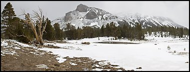 Tioga Pass, peaks and snow-covered meadow. Yosemite National Park (Panoramic color)